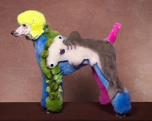 poodle-art-grooming-12