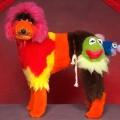 poodle-art-grooming-14