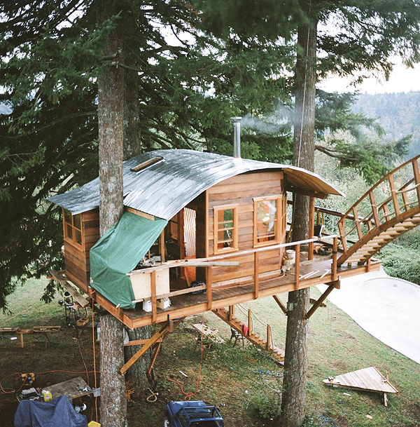 Tree House Plans For Two Trees beautiful tree house plans for two trees p throughout decorating ideas