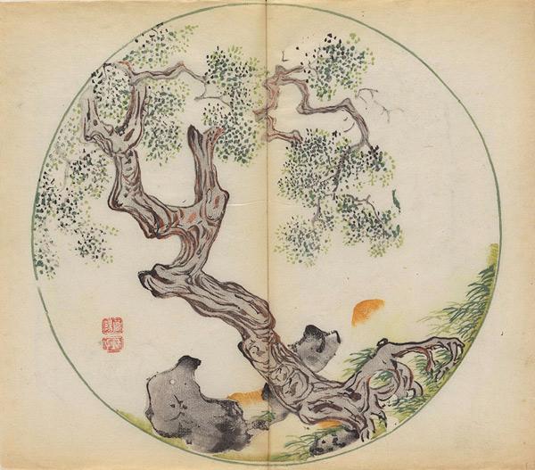 Bamboo10