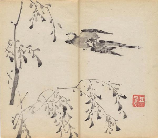 Bamboo11