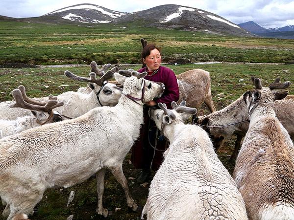reindeer-herder-mongolia_88628_990x742