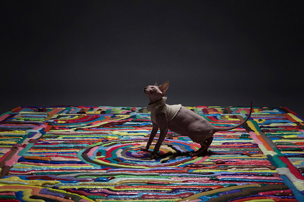 Carpets9