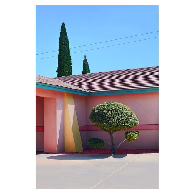 Hayley-Eichenbaum02