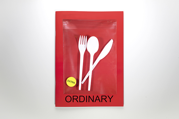 Ordinary-cover1