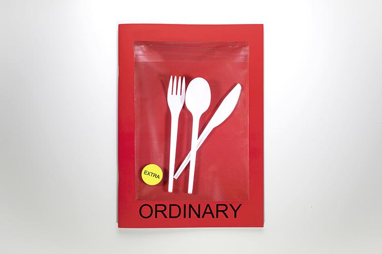 Ordinary-cover1
