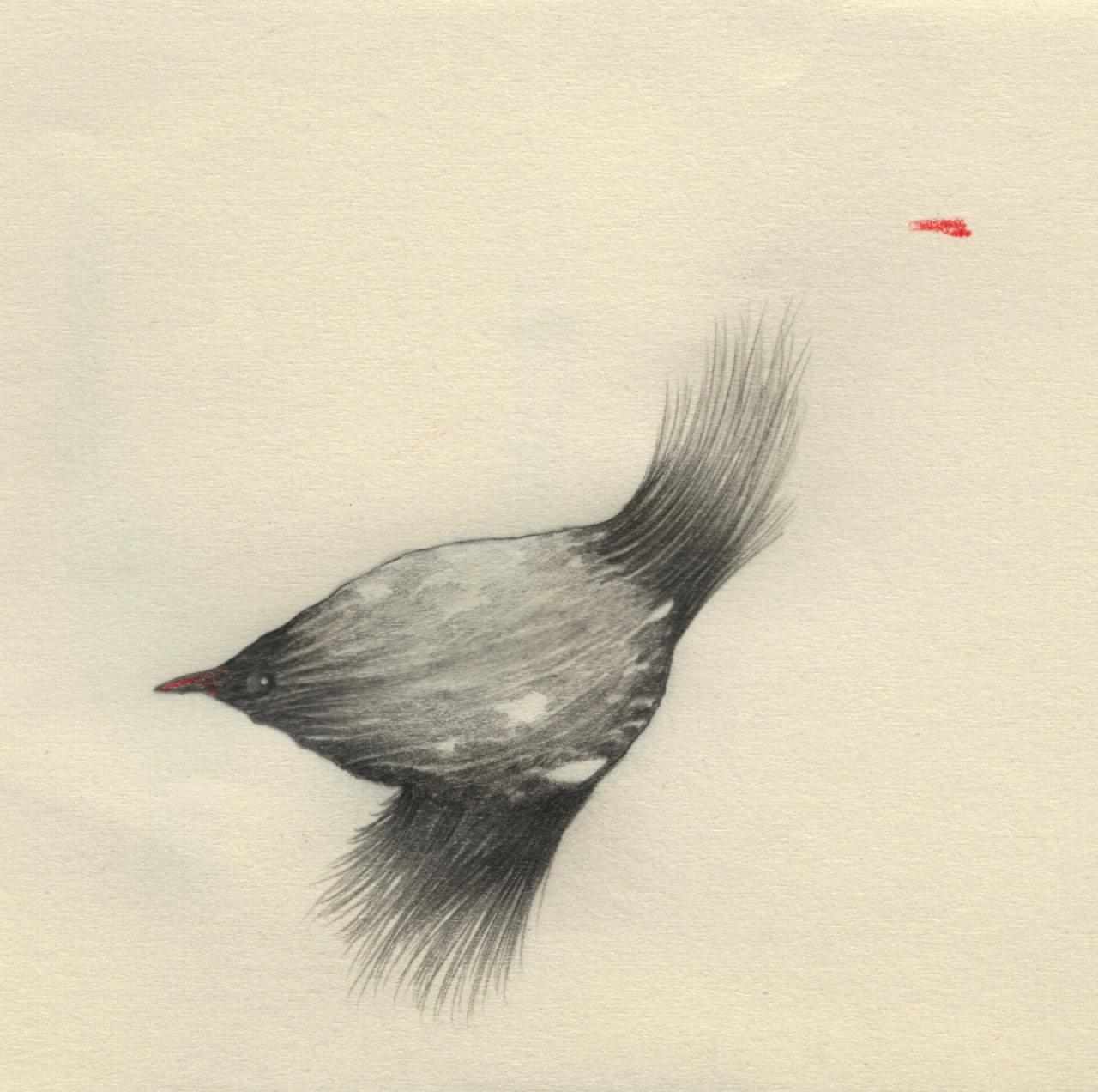 artist-andrew-smith04
