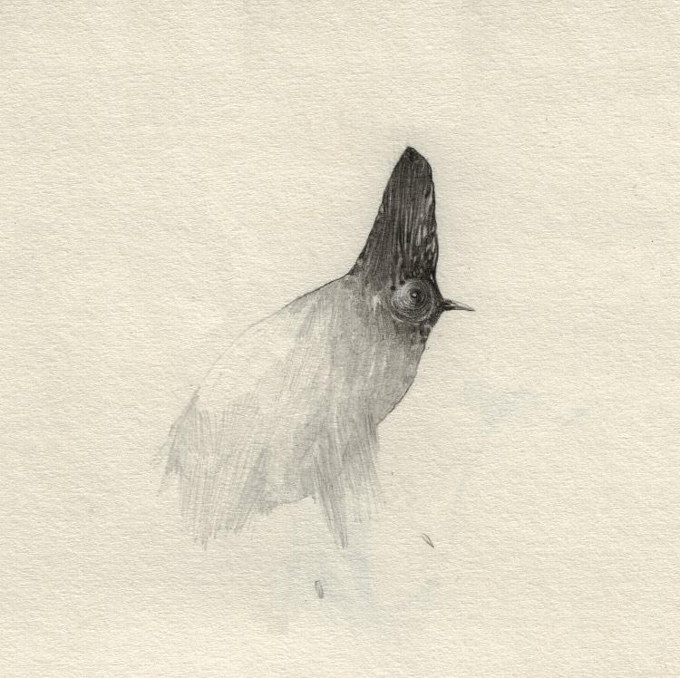 artist-andrew-smith07