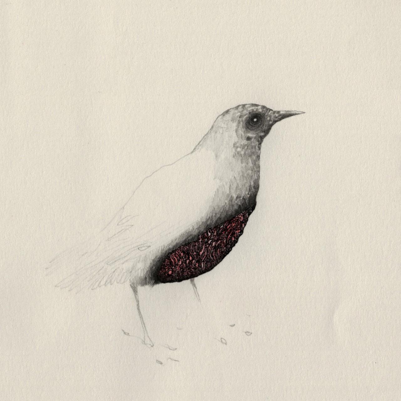 artist-andrew-smith08