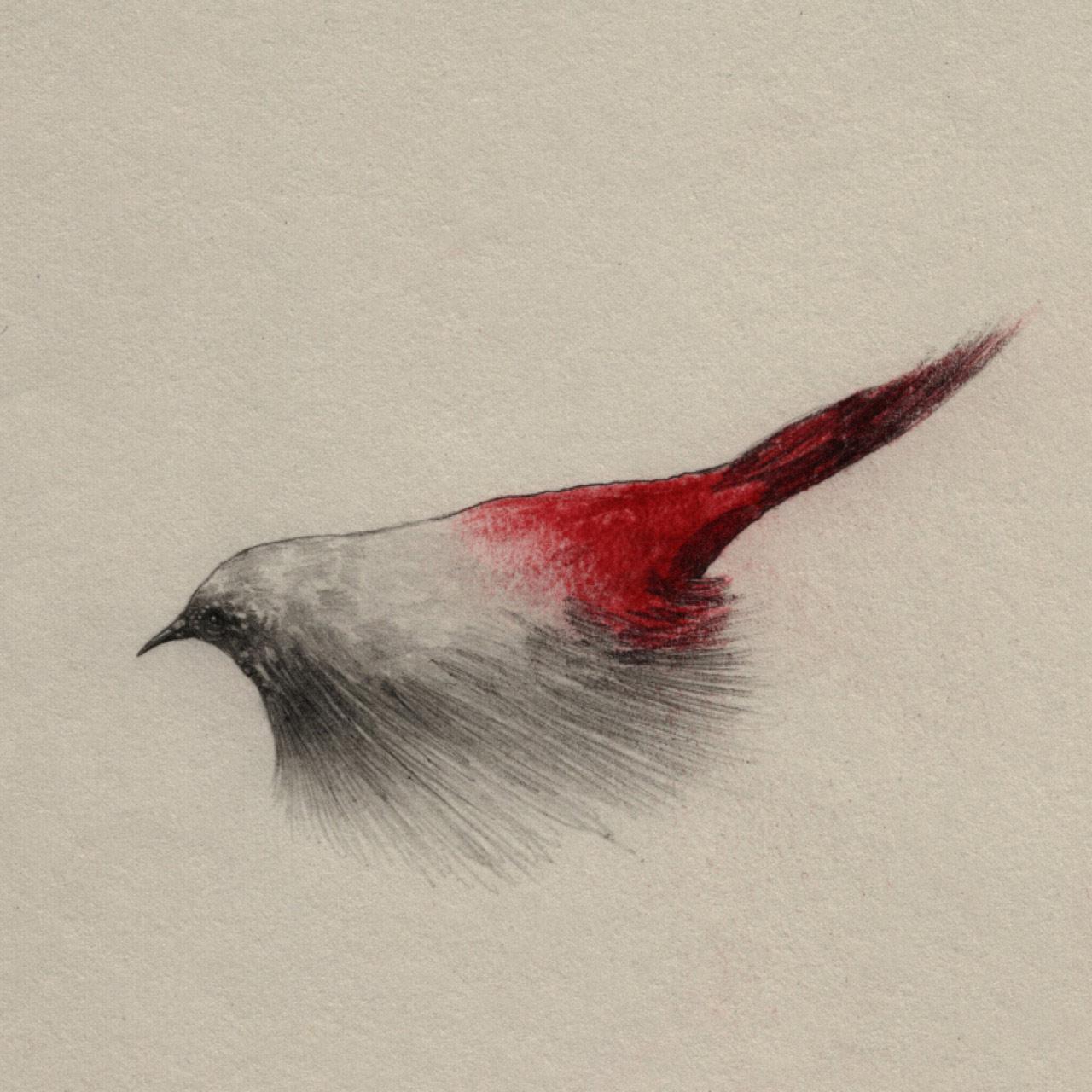 artist-andrew-smith09