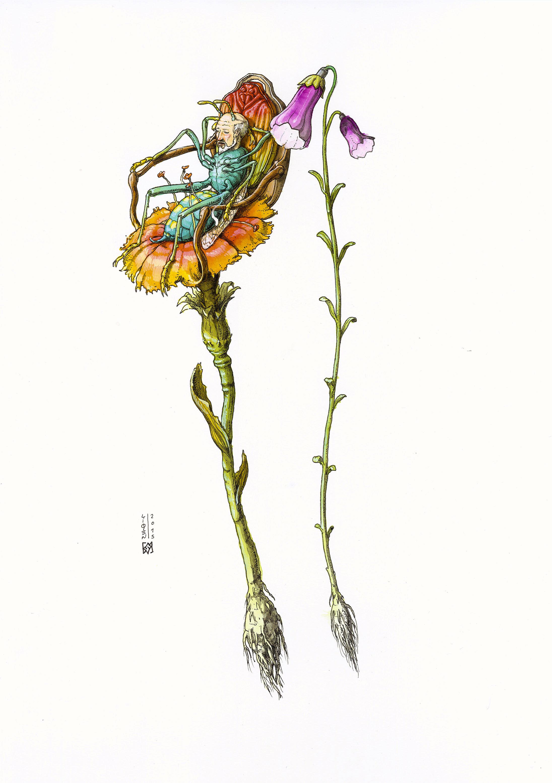 artist-liqen18