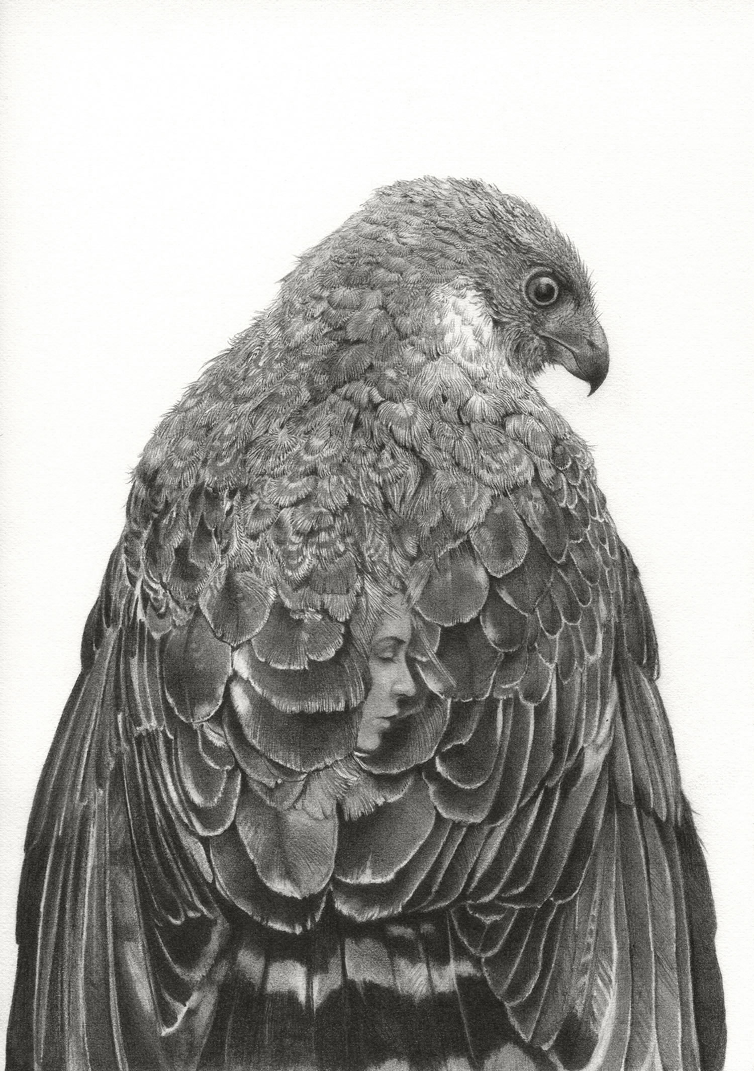 Pencil drawings by Alejandro Garcia Restrepo