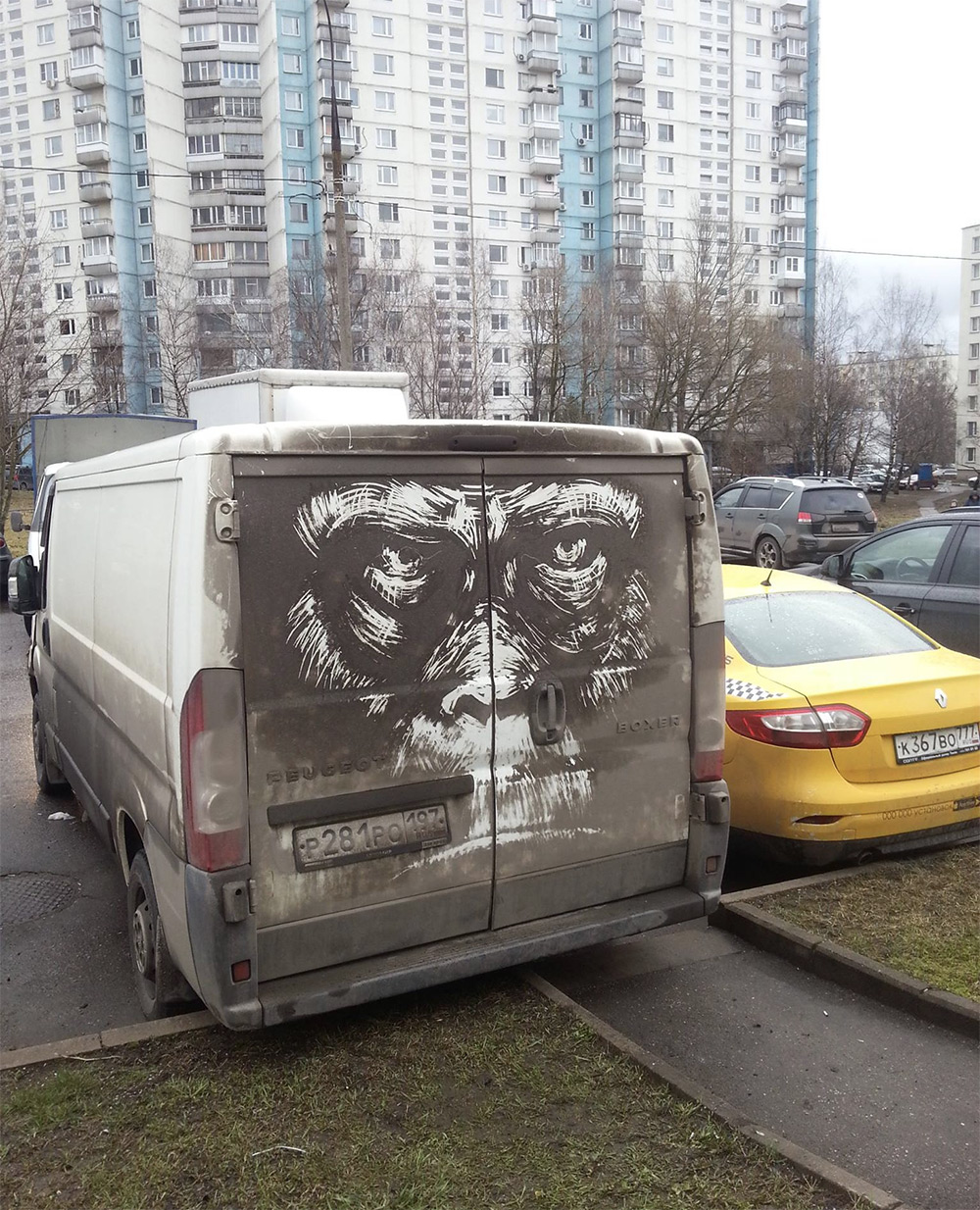 Artist Nikita Golubev Draws Animals On Dirty Cars