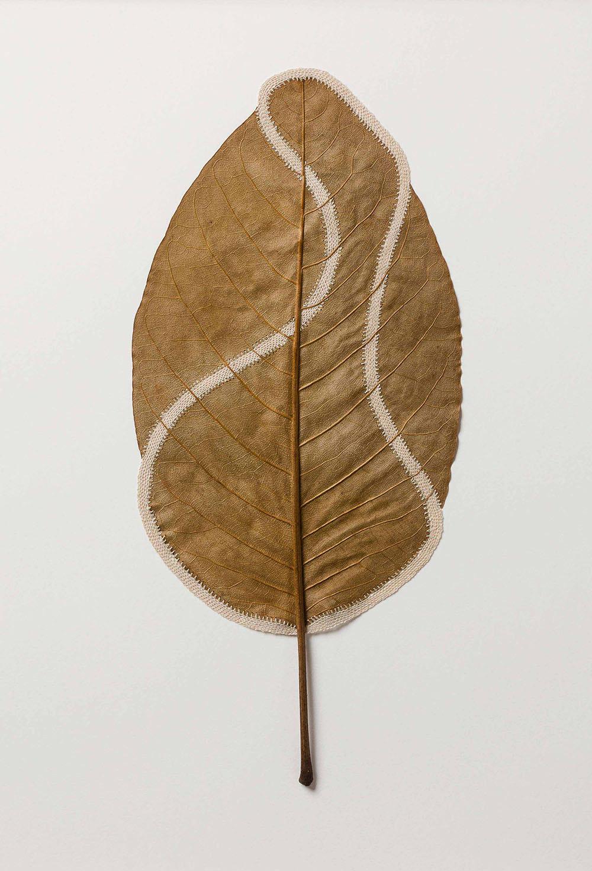 Delicately Crocheted Leaves by Artist Susanna Bauer – BOOOOOOOM! – CREATE * INSPIRE * COMMUNITY * ART * DESIGN * MUSIC * FILM * PHOTO * PROJECTS