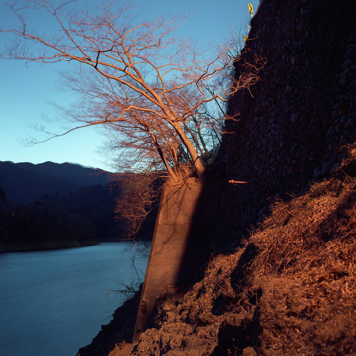 """The Riverbed"" by Photographer Kentaro Takahashi"