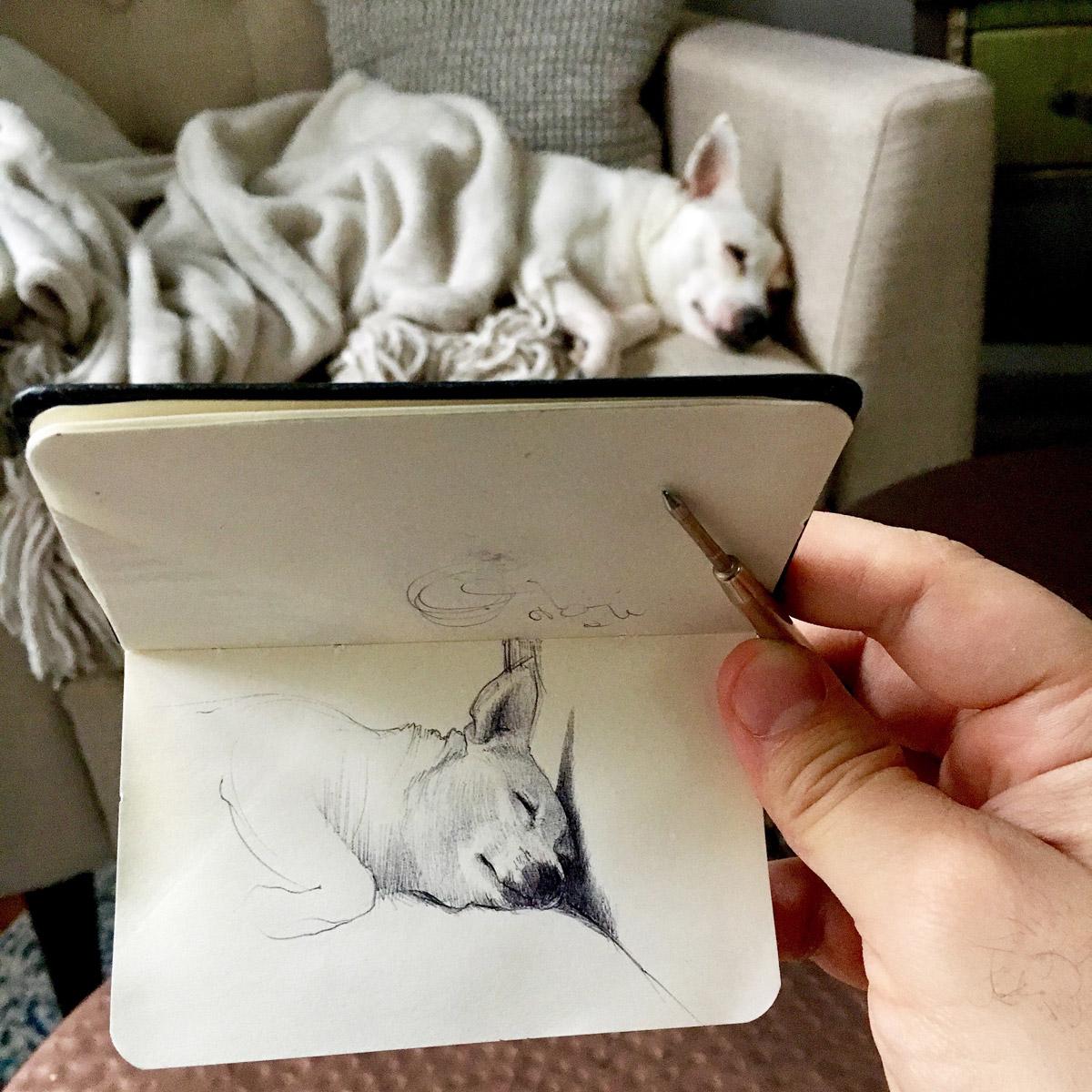 Incredible Ballpoint Pen Drawings By Artist Nicolas V Sanchez